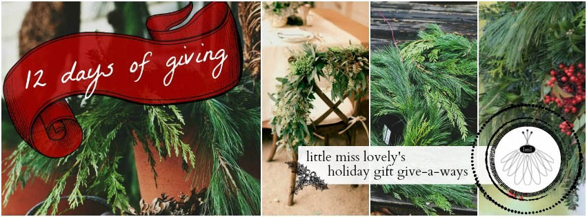 little miss lovely 12 days of giving holiday giveaways