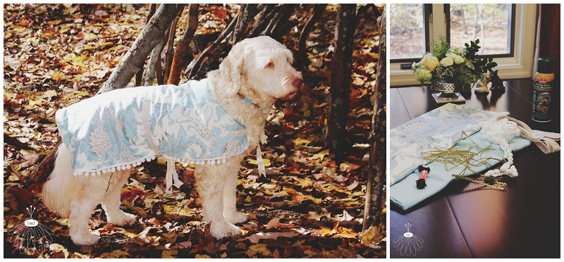 little miss lovely large dog coat jacket DIY cute labradoodle tutorial sewing 001