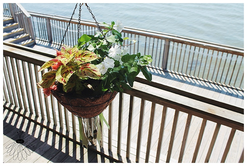 little miss lovely // ocean city md wedding florist // hanging basket with wedding colors // the sunset room