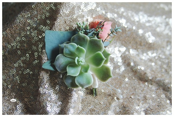 little miss lovely floral design // mint succulent with peach rose boutonniere