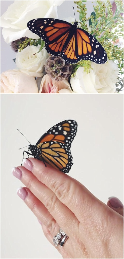 little miss lovely floral design // monarch butterfly wedding release // ocean city maryland wedding florist